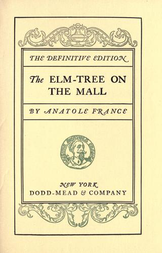 Download The elm-tree on the mall.