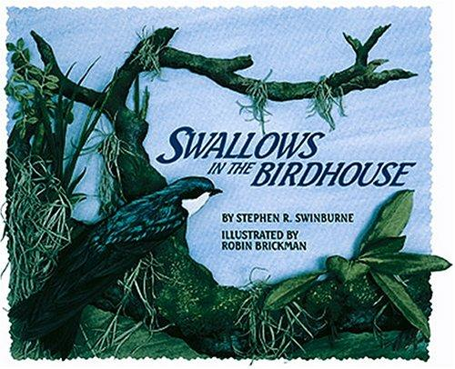 Download Swallows In The Birdhouse