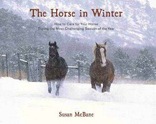 Download The horse in winter