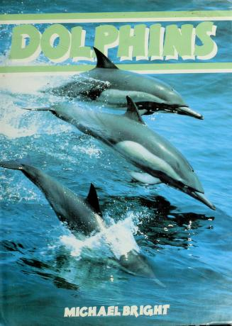 Cover of: Dolphins | Michael Bright